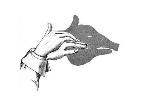 猪创意素描图片