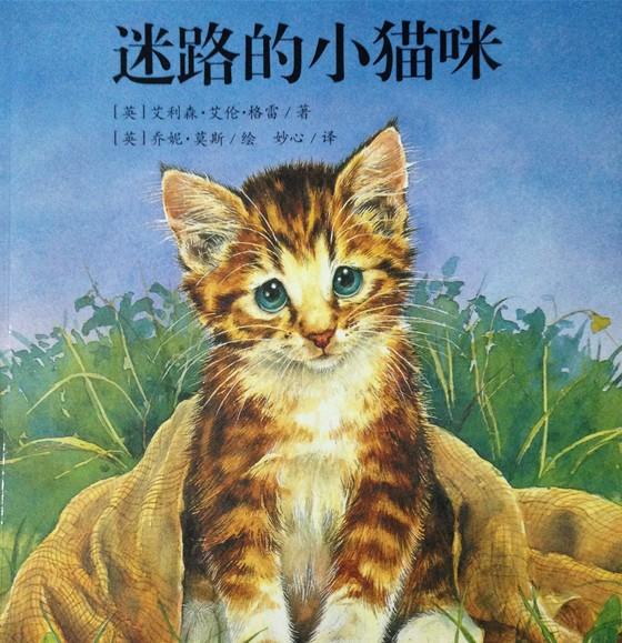 可爱的小花猫阅读