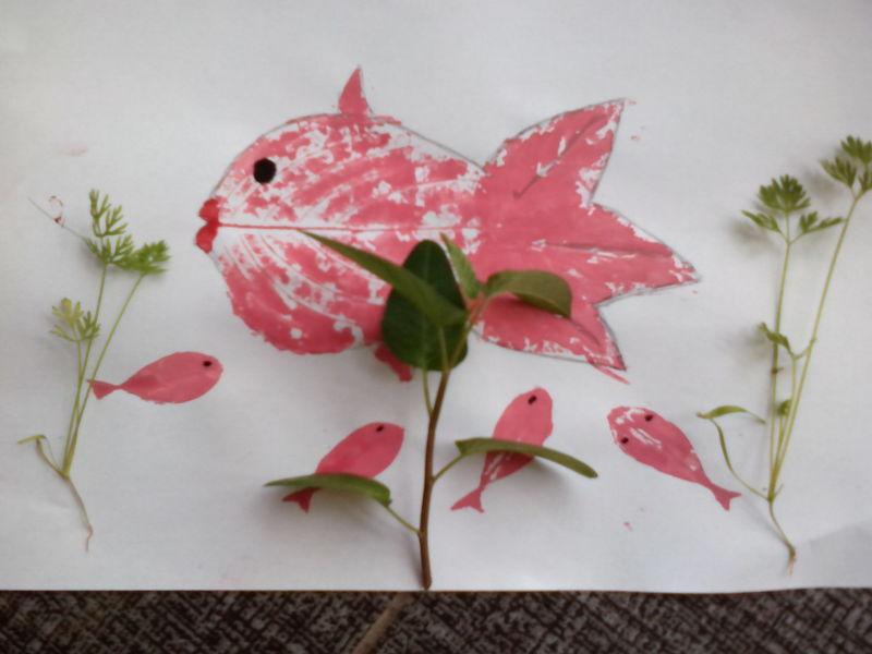 的形状,用黑色笔画出鱼的眼睛!然后再做装饰!我家正好有刚发芽的