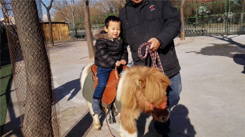 活动内容:朝阳公园欢乐岛动物园喂小动物 活动时间:2015年1月2日上午 活动费用:10元(朝阳公园门票2张)+55元(糯米上买的欢乐岛动物园亲子票),共计65元  2015年如约而至,新年我们也开始了这一年的玩乐计划,1日晚上在淘宝上看了一圈,觉得这个喂养小动物的活动不错,正好还有索尼探梦的票喂完小动物正好去这个科技馆看看,再看看2号的天气也还可以,就决定择日不如撞日就是这天了,宝宝早就在书本里跟着巧虎去了一趟动物园,我们也带他去过一次北京动物园,看过大熊猫、大象很多动物,但是那时候还太小,这次他应