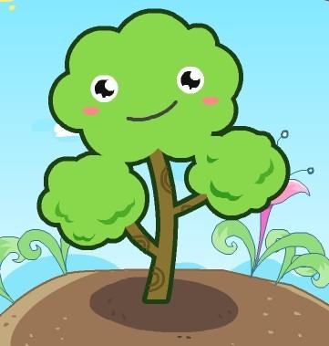 小树的心思