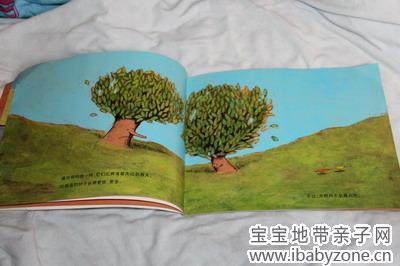 [阅读悦美丽—植物] 友谊地久天长《两颗树》 dearhxf