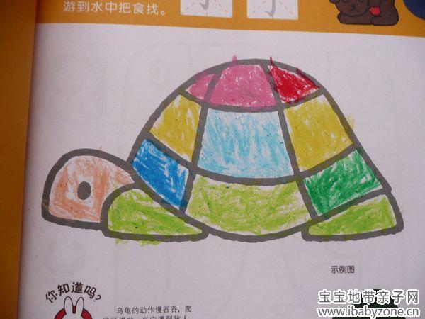 小动物乌龟简笔画; 小乌龟简笔画图片;