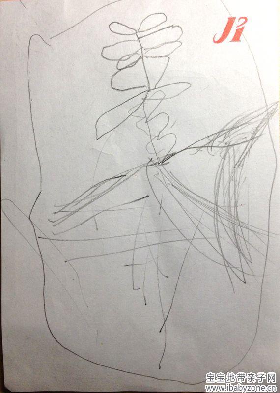 素描兔子画法步骤图片