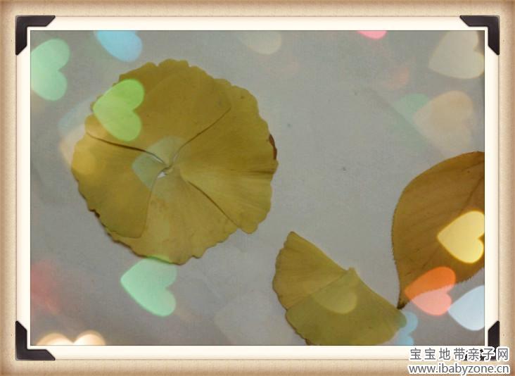 四片银杏叶做了个球,边上那条粗腿胖脚正要射门啊   二、一
