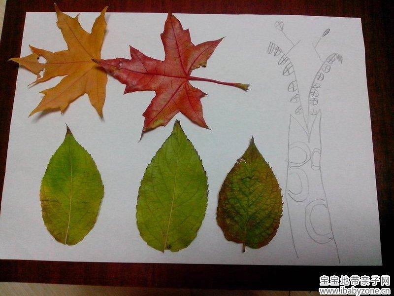 小小树叶, 红的黄的绿的真美丽。 瞧,小朋友们都喜欢它, 一起动手粘个画儿比一比。 粘个小鸟蓝天飞,  粘片柔软的云朵, 粘个红花真美丽,  啊!秋天真美丽,画里有我也有你。  我们喜欢秋天,因为秋天的天气不像夏天那么炎热,也不像冬天那么寒冷,它给人带来丝丝凉意,沁人心脾。 我们喜欢秋天,因为秋天就像宝贝的笑脸一样是最美的印记。    秋天是一个丰收的季节,是一个绚丽多彩的季节,   在这里,一棵棵柿子树树枝光秃秃的,但枝头上却挂满了红彤彤的诱人的大柿子。这些盘柿子甜甜的,味道好极了。   上次在公园
