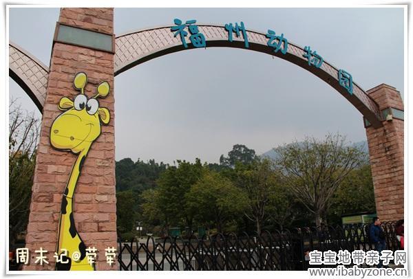 动物园的大门,有一只很可爱的长颈鹿,蛋蛋一到就认出了它.