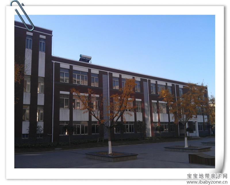叶子,点点还随手拣了很多树叶,要回家做树叶贴画,在校园里,银杏
