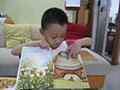 无意中的学习—《数学童话绘本》书评