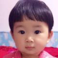 buzhi9571